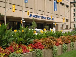 Mount Sinai Hospital | Department of Anesthesia